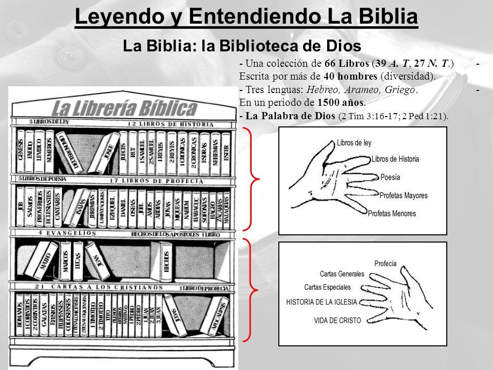 Leyendo y Entendiendo La Biblia La Biblia: la Biblioteca de Dios - Una colección de 66 Libros (39 A. T, 27 N. T.) - Escrita por más de 40 hombres (div