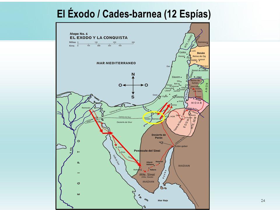24 El Éxodo / Cades-barnea (12 Espías)