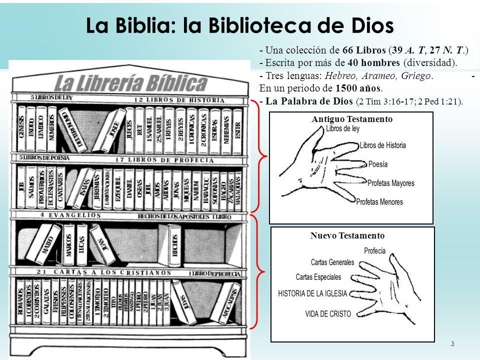 3 La Biblia: la Biblioteca de Dios - Una colección de 66 Libros (39 A. T, 27 N. T.) - Escrita por más de 40 hombres (diversidad). - Tres lenguas: Hebr