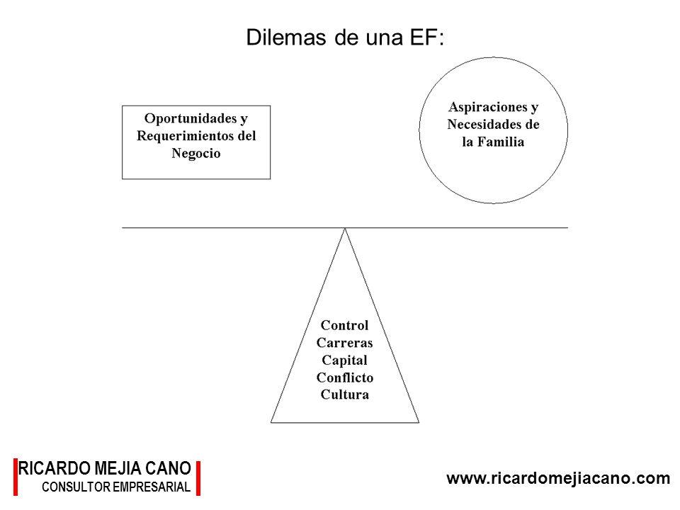 www.ricardomejiacano.com RICARDO MEJIA CANO CONSULTOR EMPRESARIAL Dilemas de una EF: