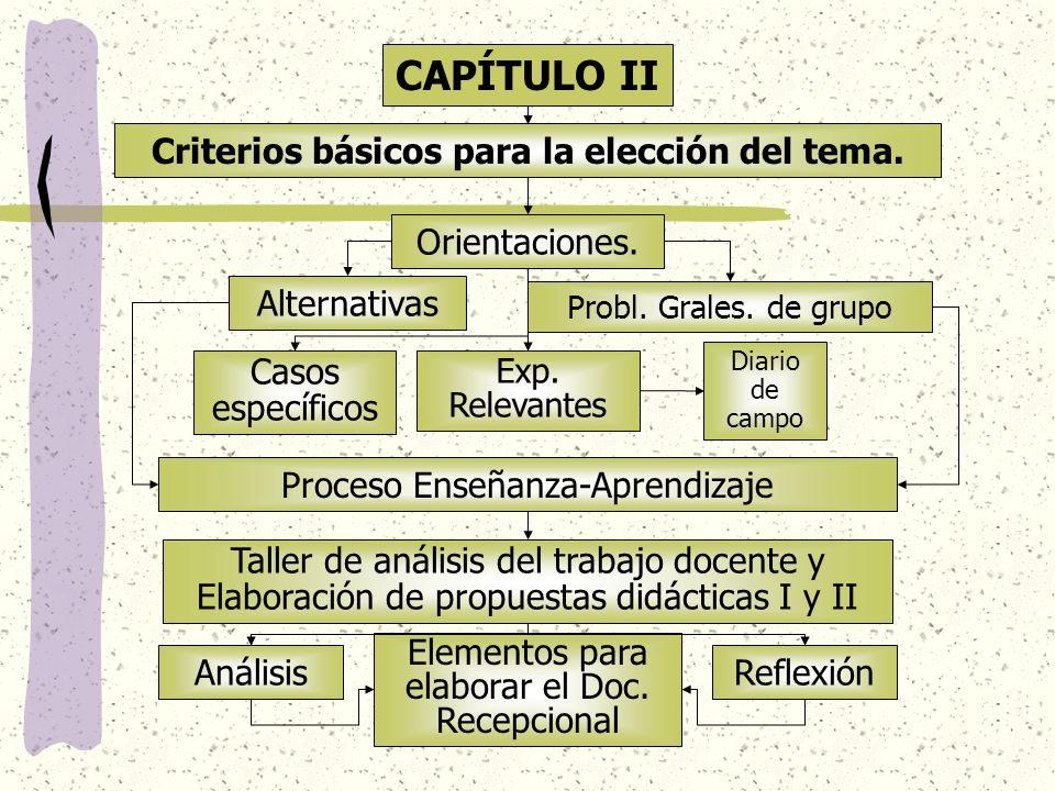 CAPÍTULO II Criterios básicos para la elección del tema. Orientaciones. Exp. Relevantes Casos específicos Alternativas Probl. Grales. de grupo Diario