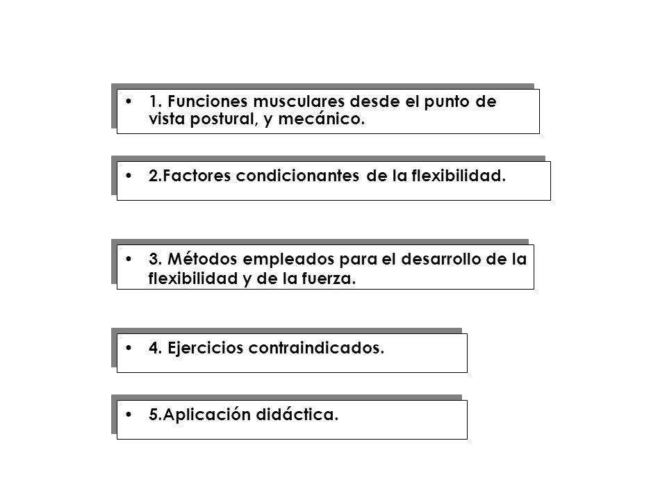 4. Ejercicios contraindicados. 2.Factores condicionantes de la flexibilidad. 1. Funciones musculares desde el punto de vista postural, y mecánico. 3.