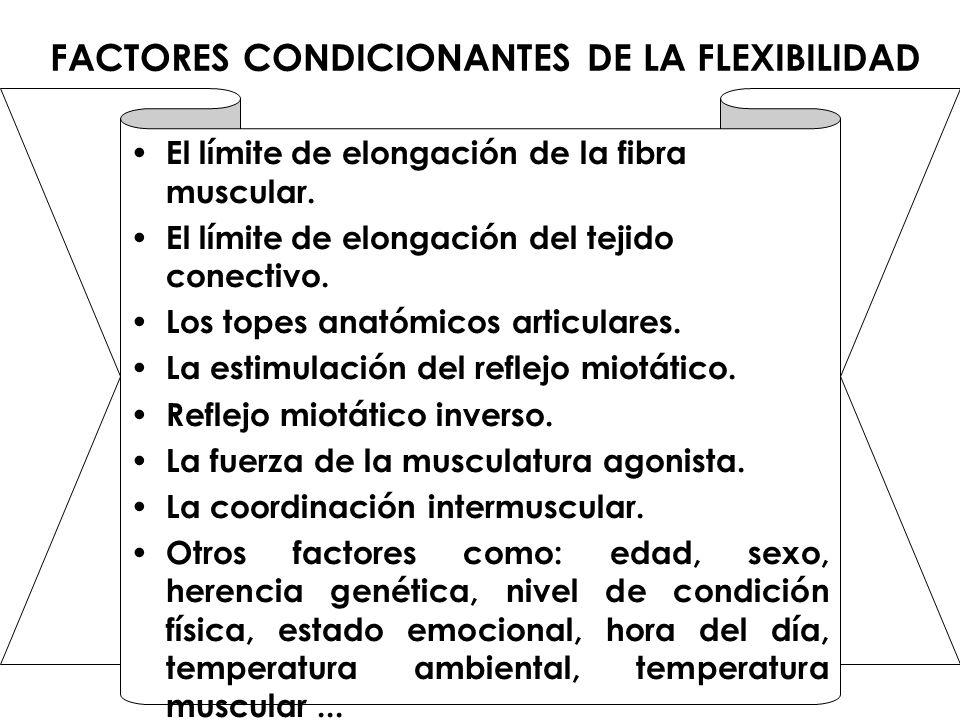 FACTORES CONDICIONANTES DE LA FLEXIBILIDAD El límite de elongación de la fibra muscular. El límite de elongación del tejido conectivo. Los topes anató