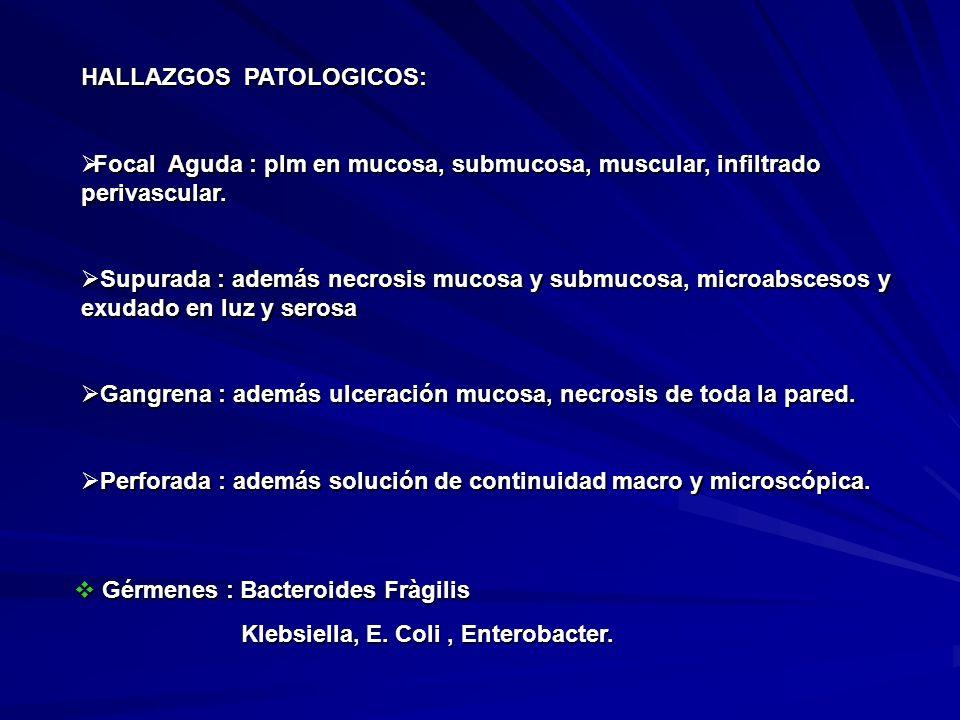 HALLAZGOS PATOLOGICOS: Focal Aguda : plm en mucosa, submucosa, muscular, infiltrado perivascular. Focal Aguda : plm en mucosa, submucosa, muscular, in