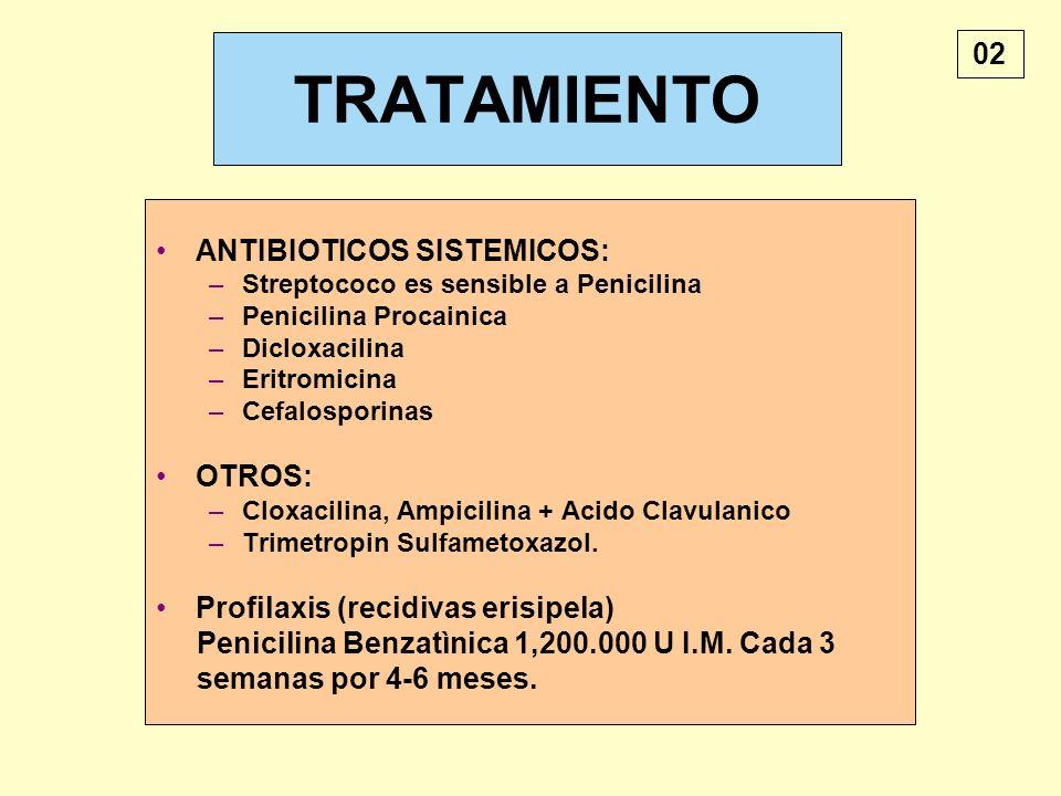 TRATAMIENTO ANTIBIOTICOS SISTEMICOS: –Streptococo es sensible a Penicilina –Penicilina Procainica –Dicloxacilina –Eritromicina –Cefalosporinas OTROS: