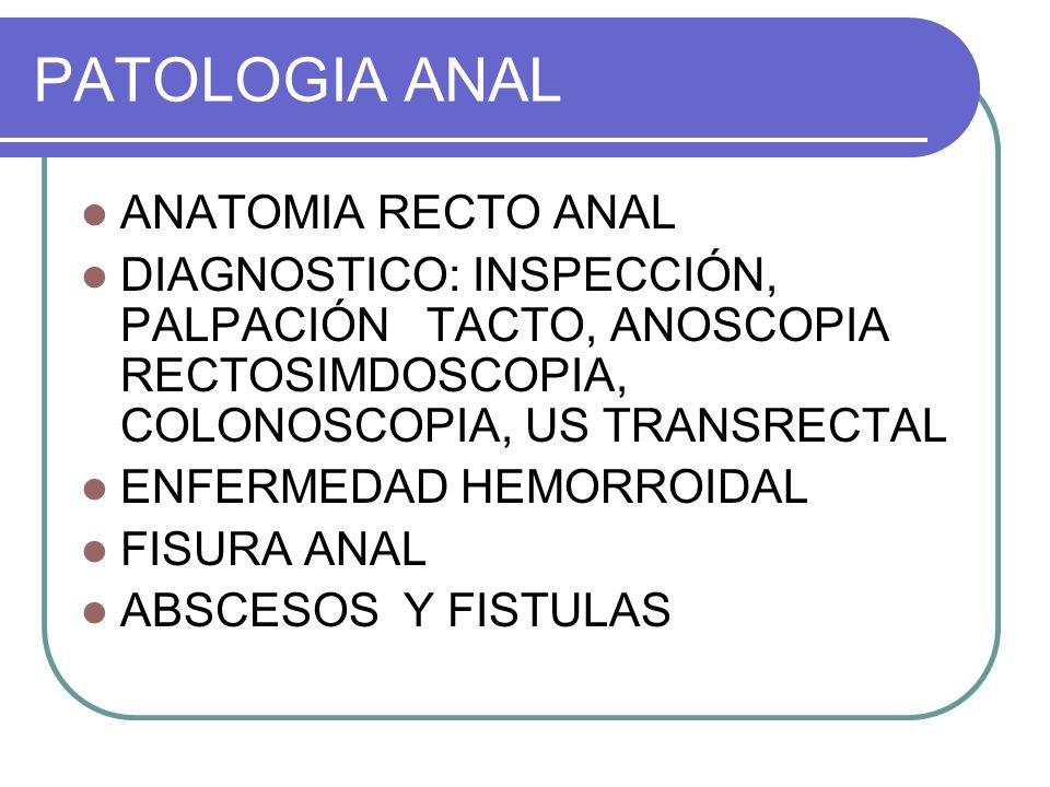PATOLOGIA ANAL ANATOMIA RECTO ANAL DIAGNOSTICO: INSPECCIÓN, PALPACIÓN TACTO, ANOSCOPIA RECTOSIMDOSCOPIA, COLONOSCOPIA, US TRANSRECTAL ENFERMEDAD HEMOR