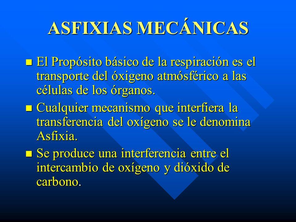 ASFIXIAS MECÁNICAS El Propósito básico de la respiración es el transporte del óxigeno atmósférico a las células de los órganos. El Propósito básico de