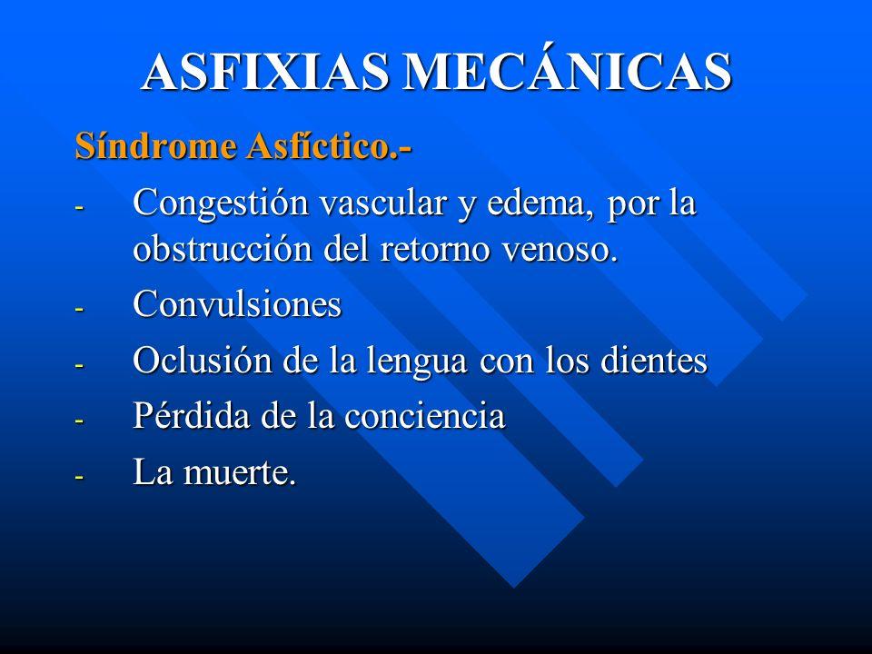 ASFIXIAS MECÁNICAS Síndrome Asfíctico.- - Congestión vascular y edema, por la obstrucción del retorno venoso. - Convulsiones - Oclusión de la lengua c