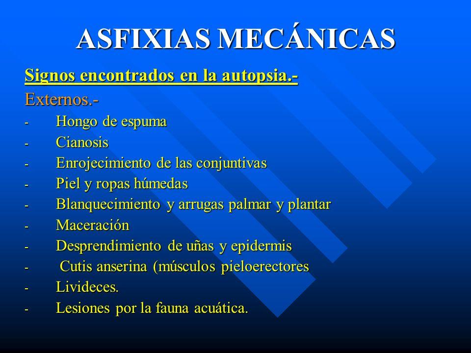ASFIXIAS MECÁNICAS Signos encontrados en la autopsia.- Externos.- - Hongo de espuma - Cianosis - Enrojecimiento de las conjuntivas - Piel y ropas húme