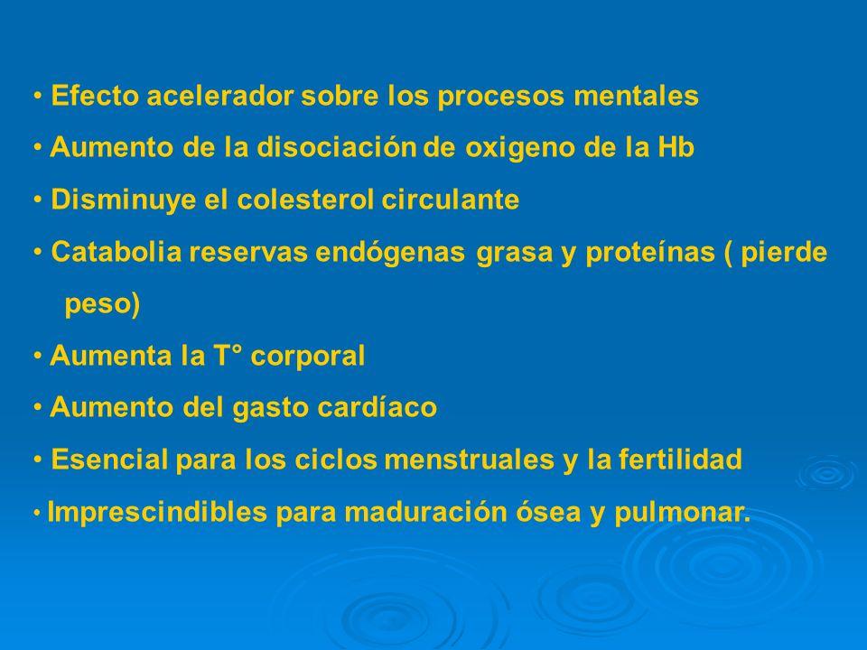 Efecto acelerador sobre los procesos mentales Aumento de la disociación de oxigeno de la Hb Disminuye el colesterol circulante Catabolia reservas endógenas grasa y proteínas ( pierde peso) Aumenta la T° corporal Aumento del gasto cardíaco Esencial para los ciclos menstruales y la fertilidad Imprescindibles para maduración ósea y pulmonar.