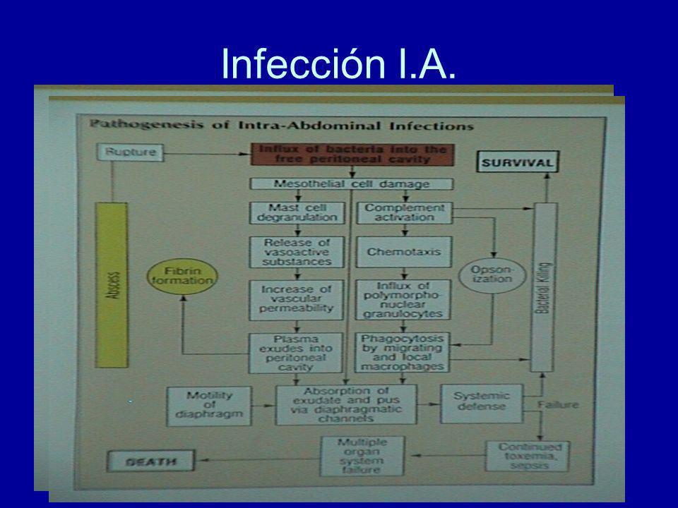 Infección I.A.