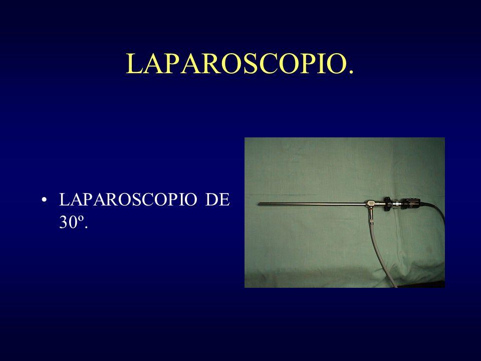 LAPAROSCOPIO. LAPAROSCOPIO DE 30º.