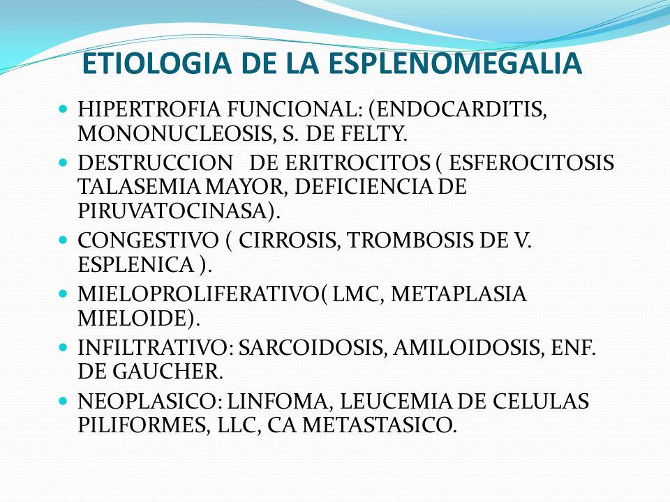 ETIOLOGIA DE LA ESPLENOMEGALIA HIPERTROFIA FUNCIONAL: (ENDOCARDITIS, MONONUCLEOSIS, S. DE FELTY. DESTRUCCION DE ERITROCITOS ( ESFEROCITOSIS TALASEMIA
