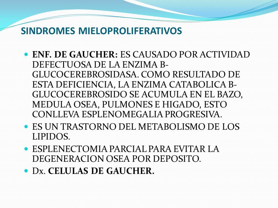 SINDROMES MIELOPROLIFERATIVOS ENF. DE GAUCHER: ES CAUSADO POR ACTIVIDAD DEFECTUOSA DE LA ENZIMA B- GLUCOCEREBROSIDASA. COMO RESULTADO DE ESTA DEFICIEN