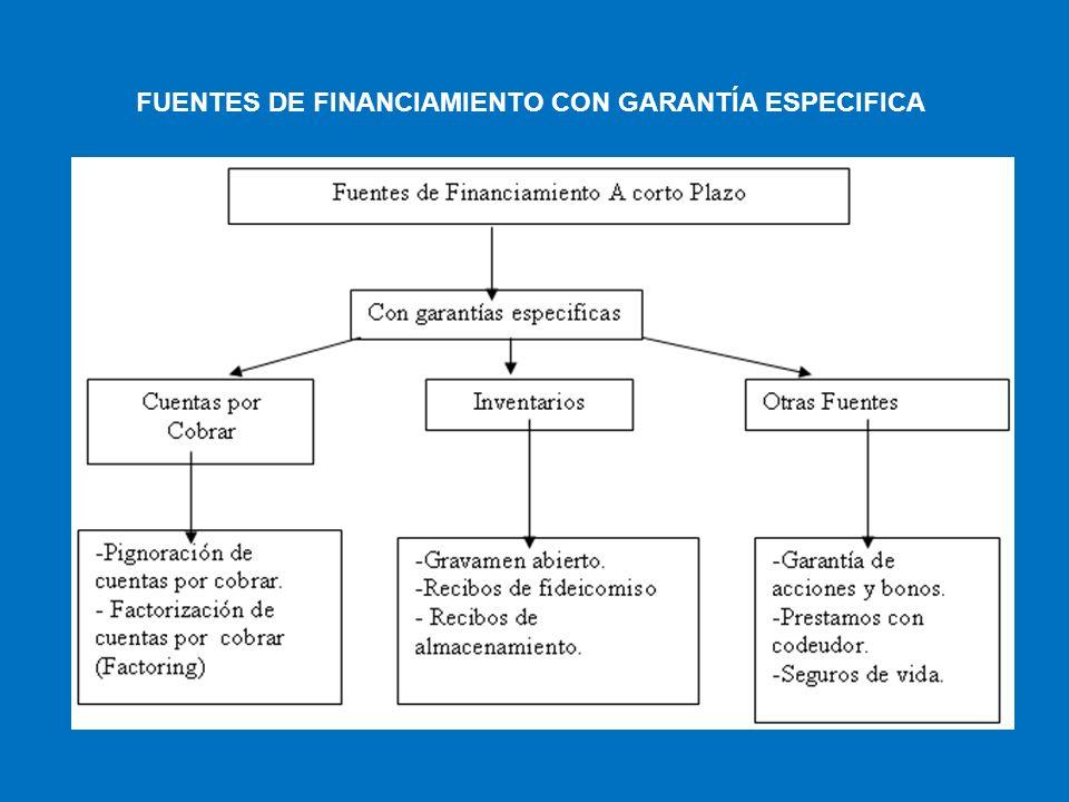 FUENTES DE FINANCIAMIENTO CON GARANTÍA ESPECIFICA