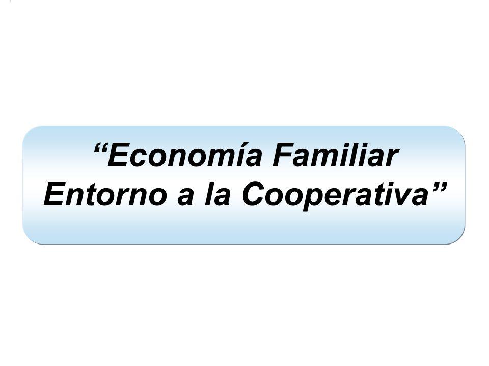 Economía Familiar Entorno a la Cooperativa