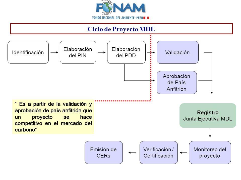 Registro Junta Ejecutiva MDL Emisión de CERs Verificación / Certificación Monitoreo del proyecto Identificación Elaboración del PIN Elaboración del PD