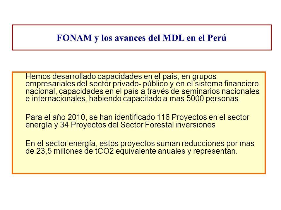 FONAM y los avances del MDL en el Perú Hemos desarrollado capacidades en el país, en grupos empresariales del sector privado- público y en el sistema