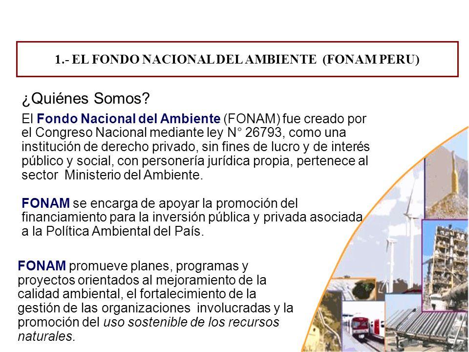 El Fondo Nacional del Ambiente (FONAM) fue creado por el Congreso Nacional mediante ley N° 26793, como una institución de derecho privado, sin fines d