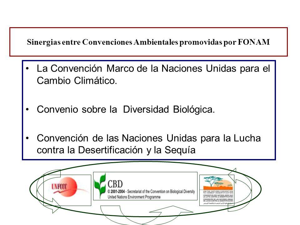 La Convención Marco de la Naciones Unidas para el Cambio Climático. Convenio sobre la Diversidad Biológica. Convención de las Naciones Unidas para la