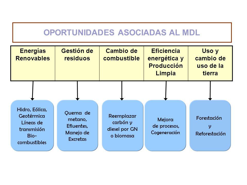 OPORTUNIDADES ASOCIADAS AL MDL Energías Renovables Gestión de residuos Cambio de combustible Eficiencia energética y Producción Limpia Uso y cambio de