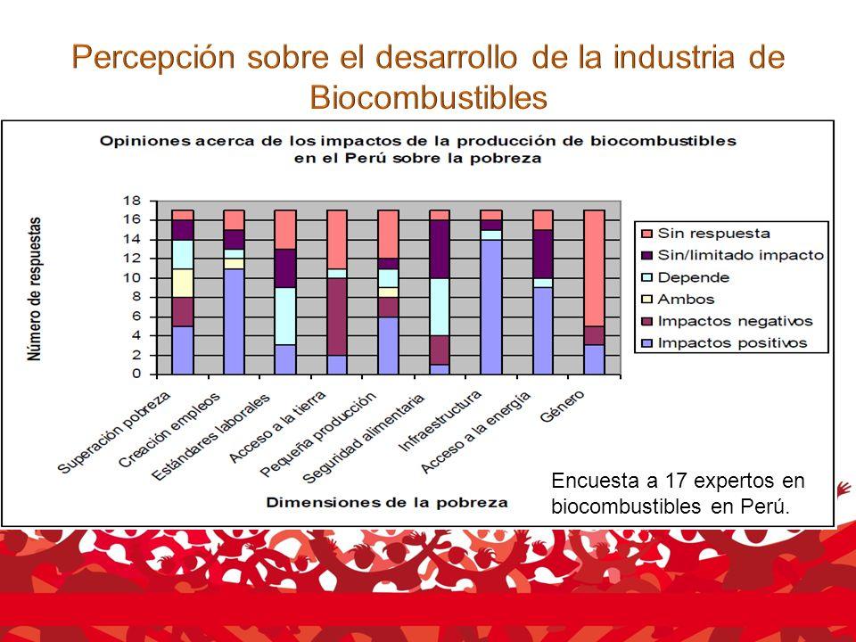 Encuesta a 17 expertos en biocombustibles en Perú.