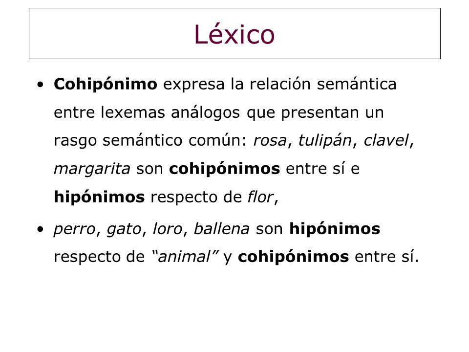 Léxico Cohipónimo expresa la relación semántica entre lexemas análogos que presentan un rasgo semántico común: rosa, tulipán, clavel, margarita son co