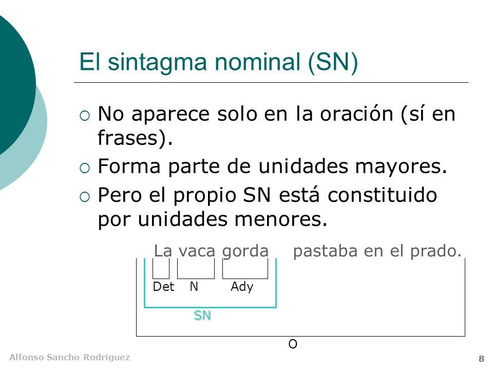 Alfonso Sancho Rodríguez 7 El sintagma nominal El sintagma nominal (SN) está constituido por una palabra o grupo de palabras, agrupadas en torno a un núcleo sustantivo, que desempeña una función unitaria dentro de la oración.