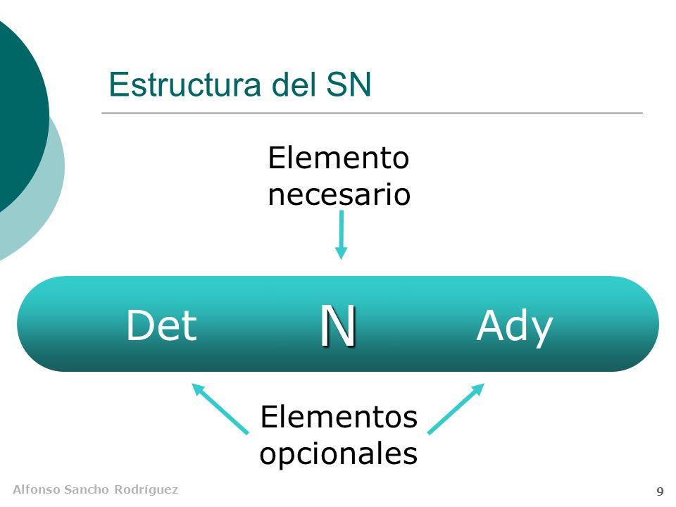Alfonso Sancho Rodríguez 8 El sintagma nominal (SN) No aparece solo en la oración (sí en frases). Forma parte de unidades mayores. Pero el propio SN e