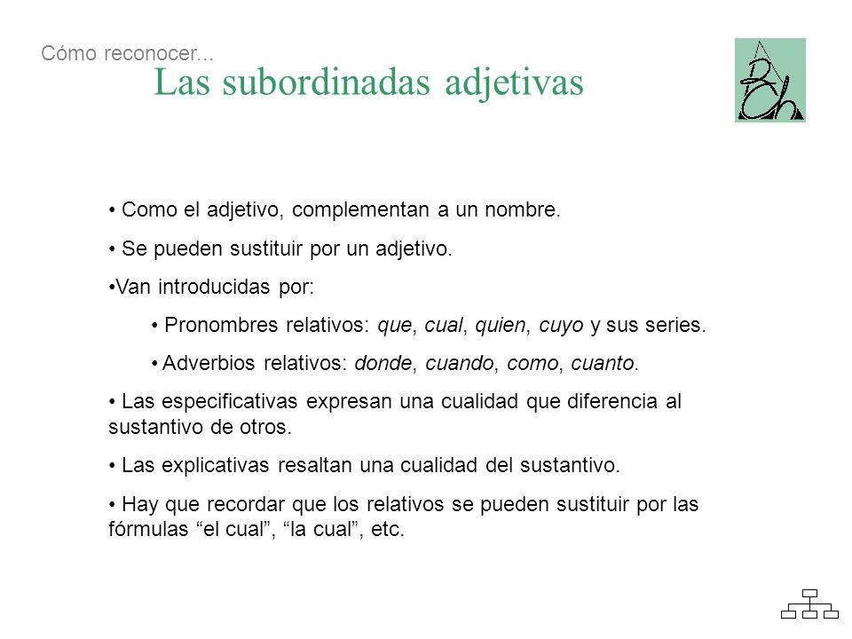 Las subordinadas adjetivas Como el adjetivo, complementan a un nombre. Se pueden sustituir por un adjetivo. Van introducidas por: Pronombres relativos