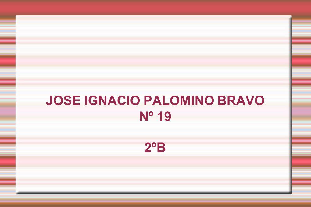 JOSE IGNACIO PALOMINO BRAVO Nº 19 2ºB
