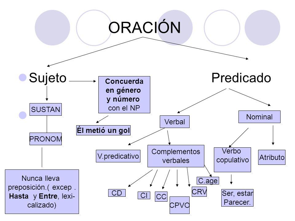 COMPLEMENTO CIRCUNSTANCIAL DE CANTIDAD Significado e identificación Expresa una cantidad dentro del predicado.