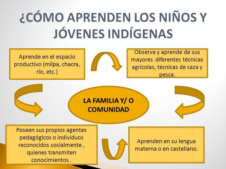 LA FAMILIA Y/ O COMUNIDAD Aprende en el espacio productivo (milpa, chacra, río, etc.) Aprenden en su lengua materna o en castellano. Observa y aprende