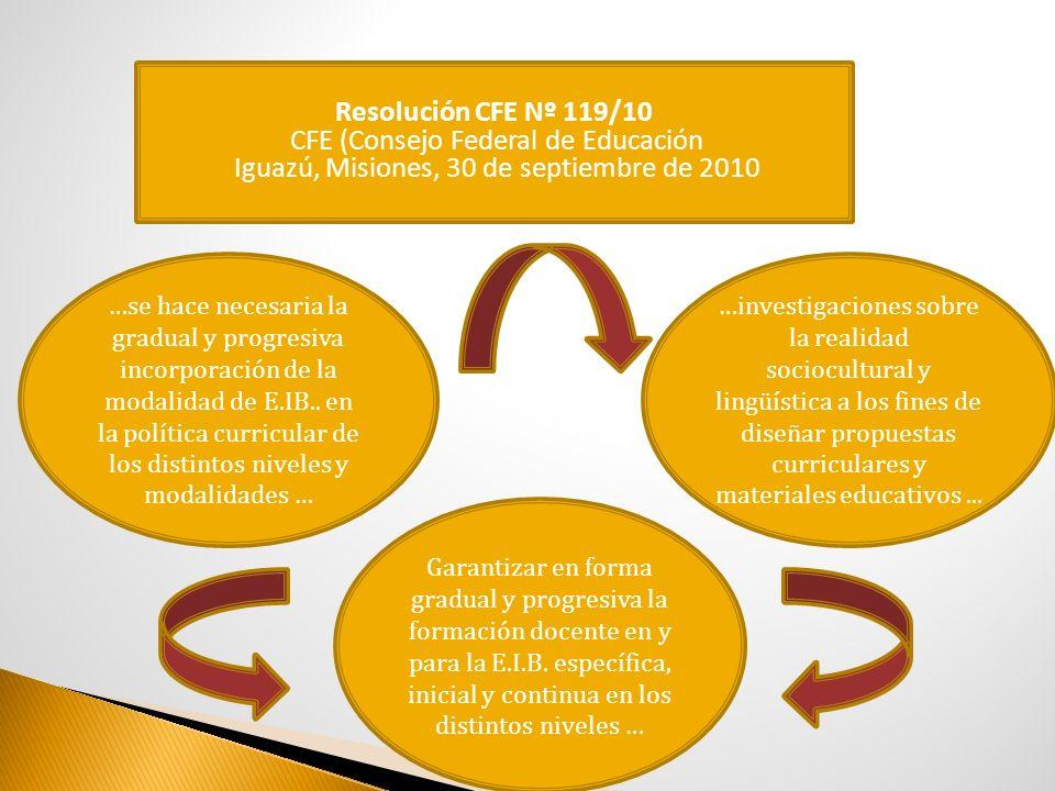 Resolución CFE Nº 119/10 CFE (Consejo Federal de Educación Iguazú, Misiones, 30 de septiembre de 2010 Garantizar en forma gradual y progresiva la form