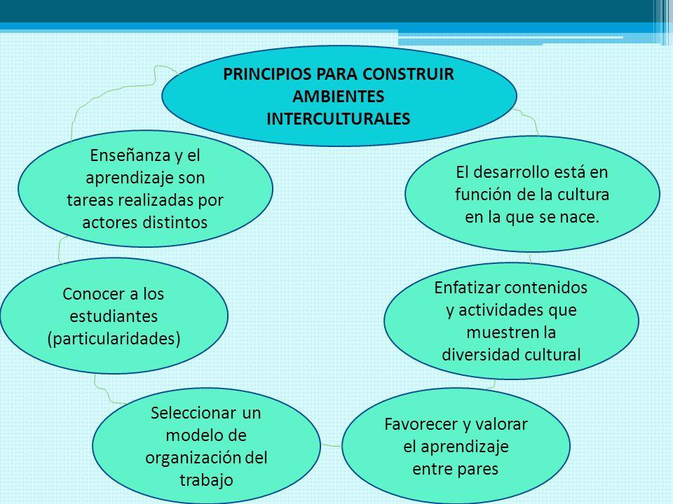 PRINCIPIOS PARA CONSTRUIR AMBIENTES INTERCULTURALES Enseñanza y el aprendizaje son tareas realizadas por actores distintos Conocer a los estudiantes (