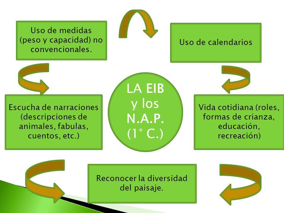 LA EIB y los N.A.P. (1° C.) Uso de medidas (peso y capacidad) no convencionales. Reconocer la diversidad del paisaje. Vida cotidiana (roles, formas de