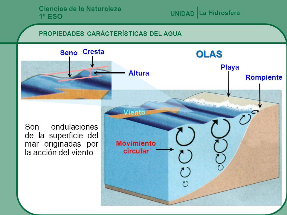 Ciencias de la Naturaleza 1º ESO PROPIEDADES CARÁCTERÍSTICAS DEL AGUA La Hidrosfera UNIDAD El agua puede disolver muchas sustancias. Esta propiedad ha