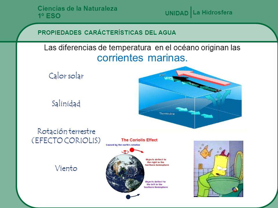 Ciencias de la Naturaleza 1º ESO PROPIEDADES CARÁCTERÍSTICAS DEL AGUA La Hidrosfera UNIDAD Las diferencias de temperatura en el océano originan las co