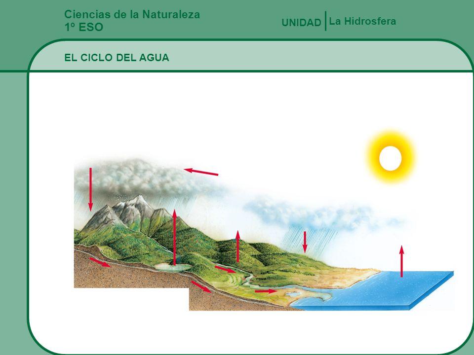 Ciencias de la Naturaleza 1º ESO PROPIEDADES CARÁCTERÍSTICAS DEL AGUA La Hidrosfera UNIDAD Las diferencias de temperatura y salinidad en el océano ori