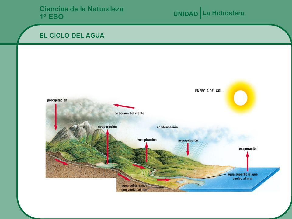 Ciclos Del Agua en la Naturaleza Ciclo Del Agua en Nuestro