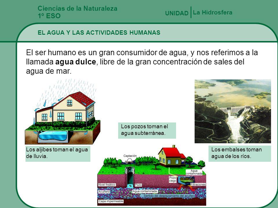 Ciencias de la Naturaleza 1º ESO LOS SERES VIVOS Y EL AGUA UNIDAD La Hidrosfera Cómo se adaptan los organismos a vivir en el agua MOVIMIENTORESPIRACIÓ