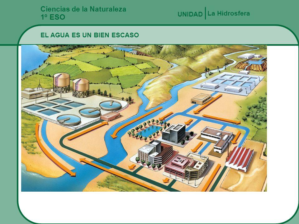 Ciencias de la Naturaleza 1º ESO EL AGUA Y LAS ACTIVIDADES HUMANAS La Hidrosfera UNIDAD Las aguas superficiales se pueden contaminar. Las plantas pota