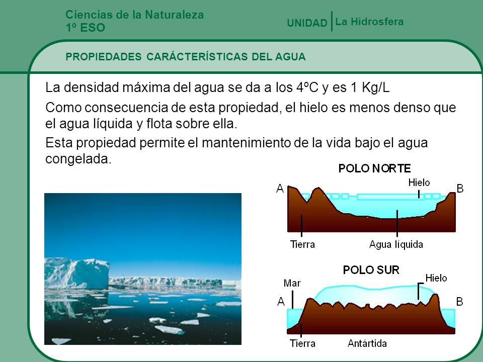 Ciencias de la Naturaleza 1º ESO PROPIEDADES CARÁCTERÍSTICAS DEL AGUA La Hidrosfera UNIDAD El agua en estado puro no tiene color (incolora), no tiene