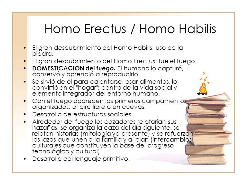Homo Erectus / Homo Habilis El gran descubrimiento del Homo Habilis: uso de la piedra. El gran descubrimiento del Homo Erectus: fue el fuego. DOMESTIC