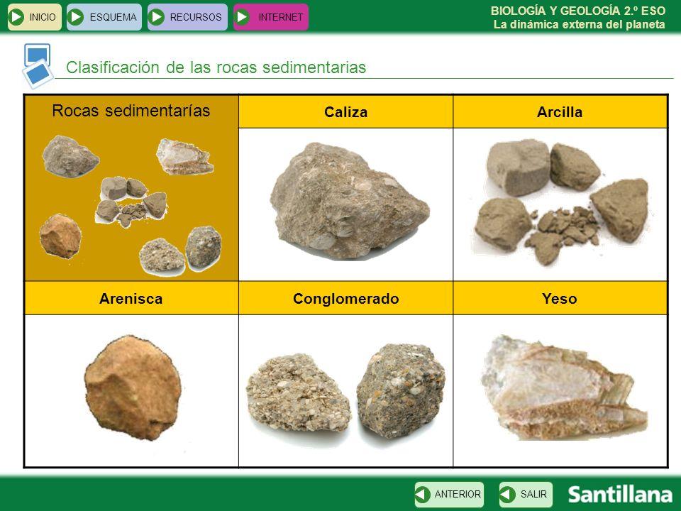 BIOLOGÍA Y GEOLOGÍA 2.º ESO La dinámica externa del planeta INICIOESQUEMARECURSOSINTERNET Clasificación de las rocas sedimentarias SALIRANTERIOR Rocas