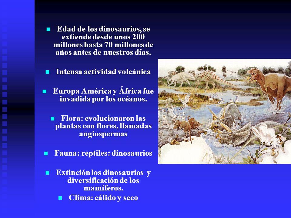 Edad de los dinosaurios, se extiende desde unos 200 millones hasta 70 millones de años antes de nuestros días. Intensa actividad volcánica Europa Amér