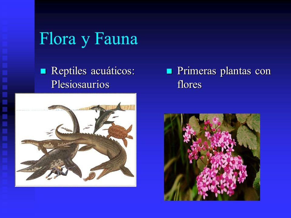 Flora y Fauna Reptiles acuáticos: Plesiosaurios Reptiles acuáticos: Plesiosaurios Primeras plantas con flores