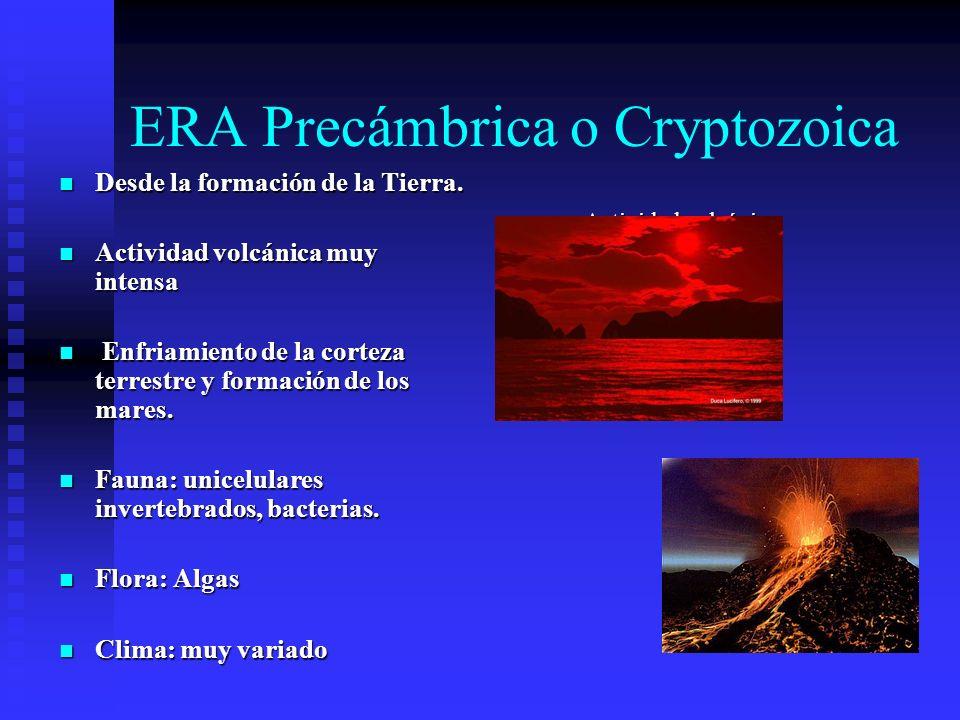 ERA Precámbrica o Cryptozoica Desde la formación de la Tierra. Desde la formación de la Tierra. Actividad volcánica muy intensa Actividad volcánica mu
