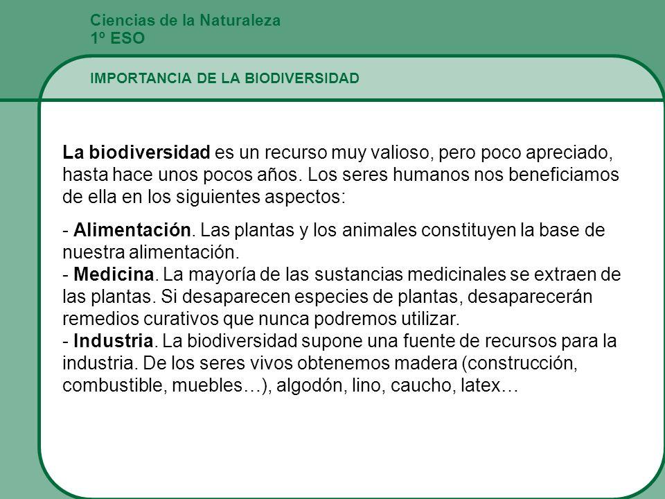 Ciencias de la Naturaleza 1º ESO IMPORTANCIA DE LA BIODIVERSIDAD La biodiversidad es un recurso muy valioso, pero poco apreciado, hasta hace unos poco