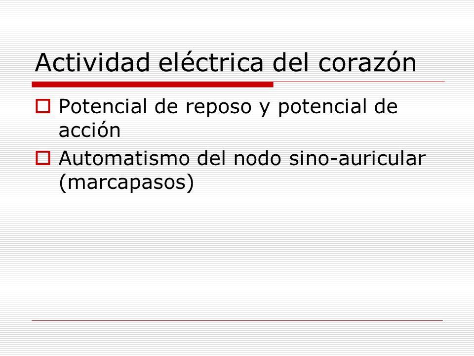 Actividad eléctrica del corazón Potencial de reposo y potencial de acción Automatismo del nodo sino-auricular (marcapasos)